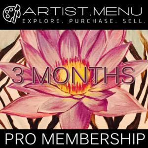 3 Month Pro Membership